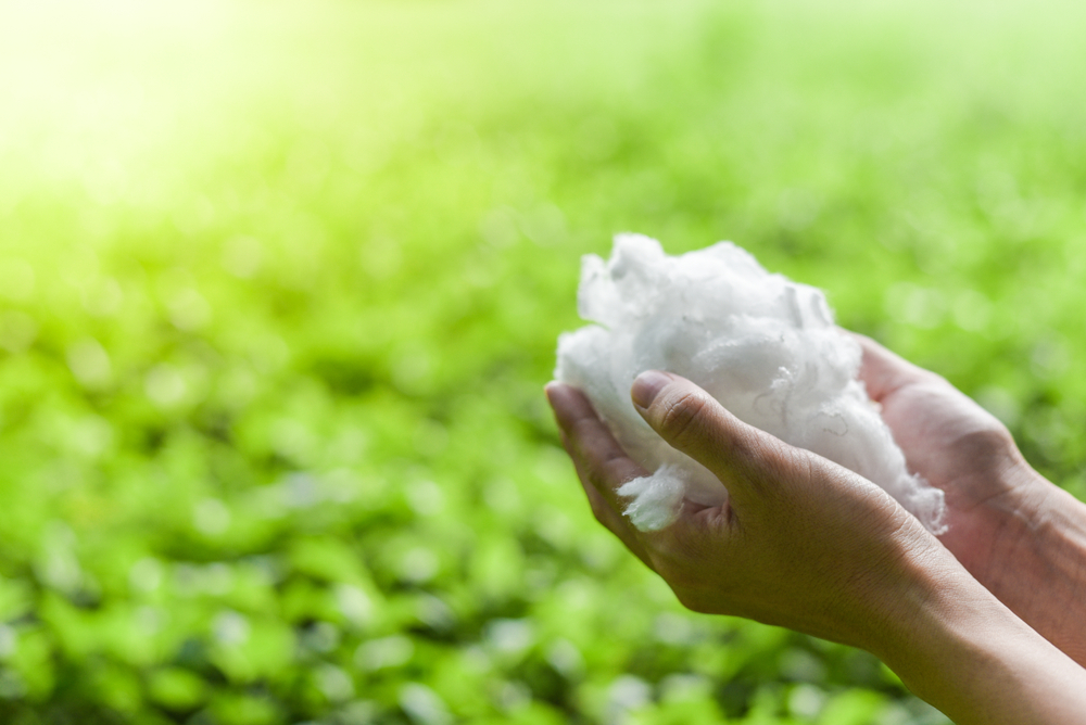 Circular Economy put to practice: from PET waste to polyester fiber