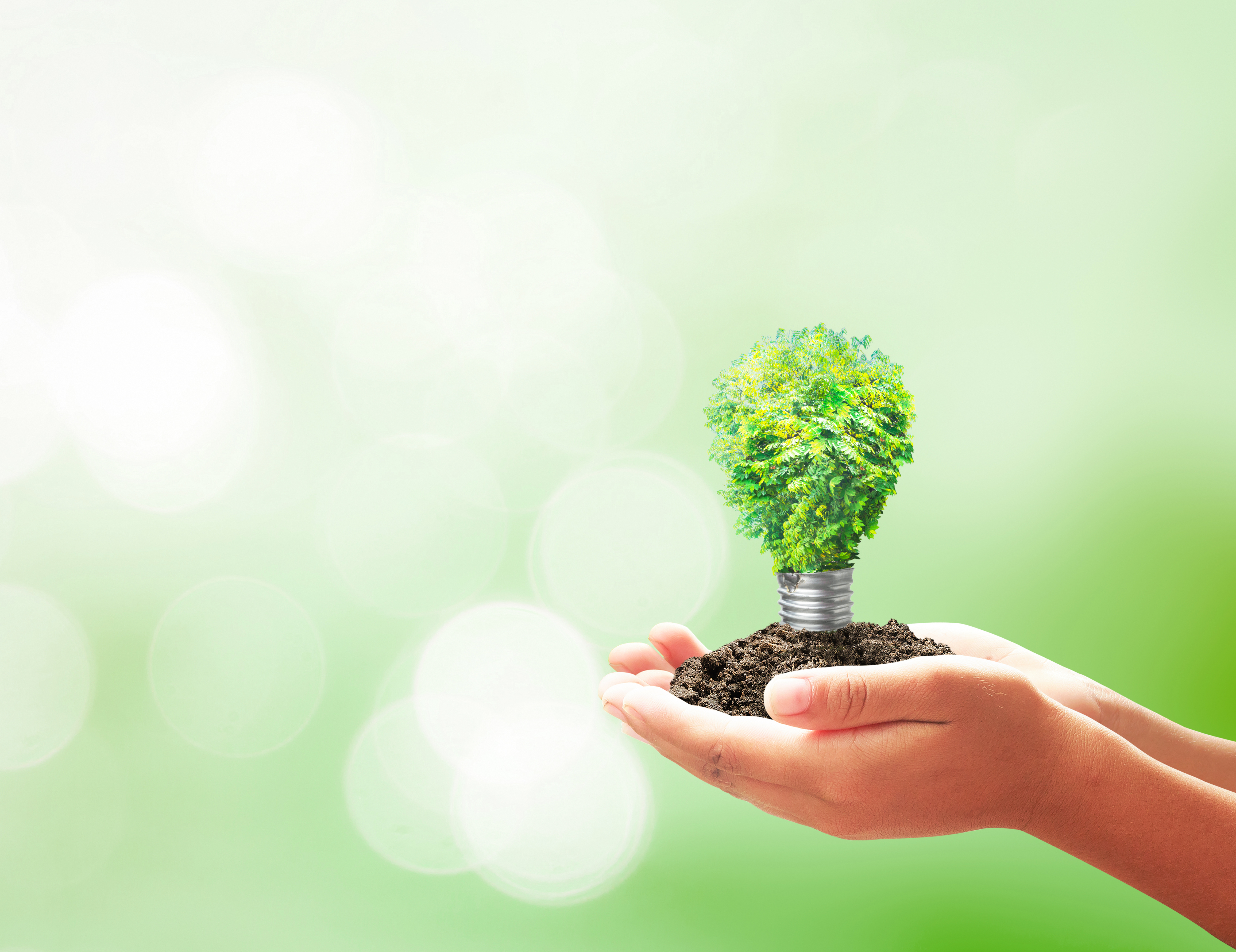 Green Group is launching the first sustainable syndicated loan in the Romanian market